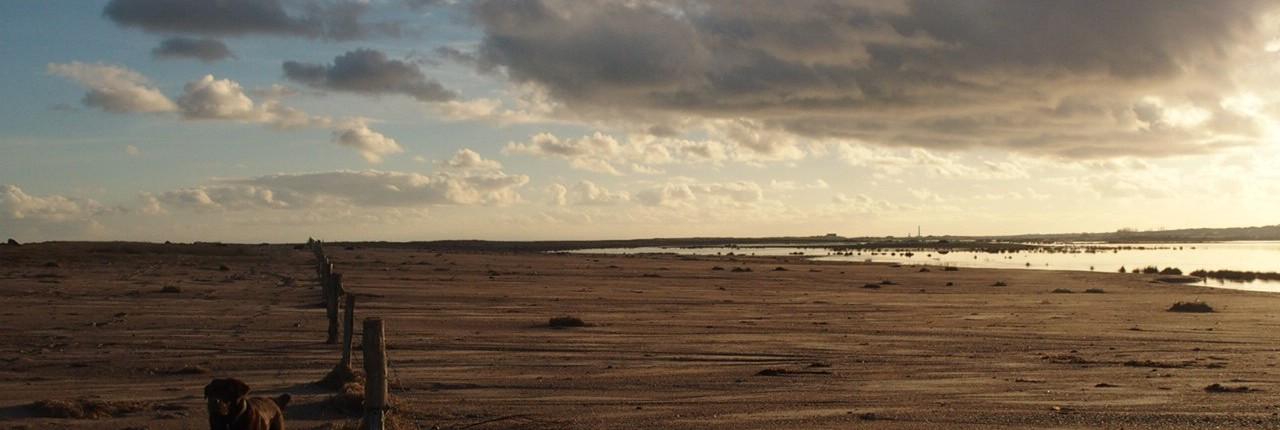 Location Cotentin mer-gîte de bord de mer-Mares de Vrasville